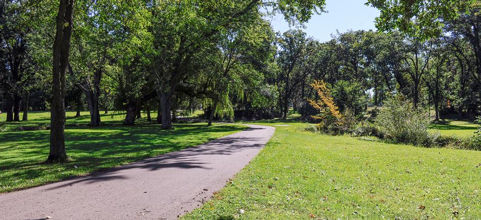 bike_trail3